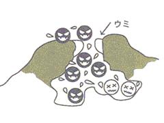 膿疱(ウミをもったにきび)